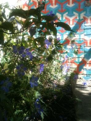 Gardens : Design Portfolio: Wharf Chambers, Leeds: After