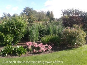 Austin's Gardens Garden Design, Construction & Maintenance Leeds, Harrogate, West Yorkshire