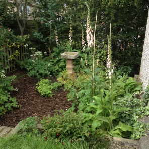 W O O D L A N D ・ P L A N T I N G With a large rotten Laburnum needing to be removed, the client wanted a wholesale change to the scruffy lower half of their garden to reflect their interest in wildlife. So we created this woodland scheme for a small space, filled with wildlife friendly planting